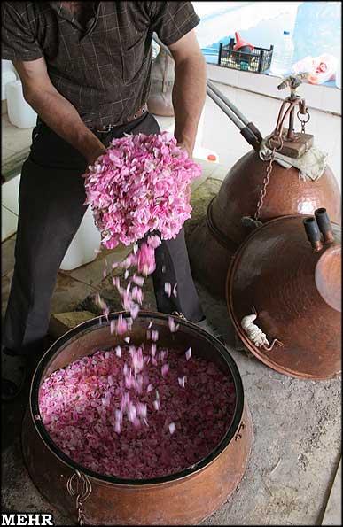 کارگاه سنتی گلاب گیری